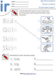 Primary Level 1 Phonics Worksheets for Kindergarten Kids